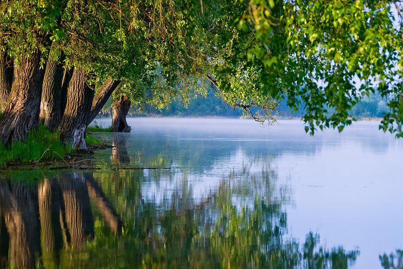 water-3519938_1920.jpg