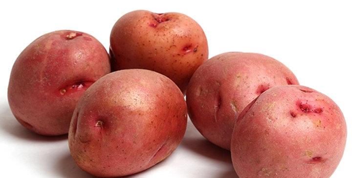 Organic Potatoes (Red)