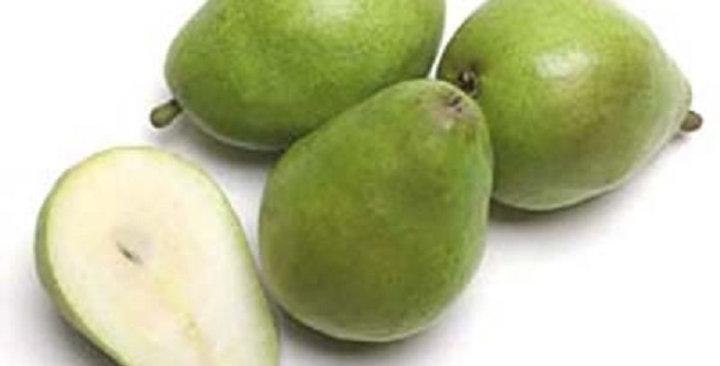 Organic Pears (D'Anjou)