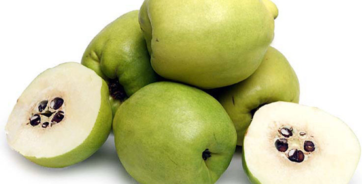 Quince (Pineapple)