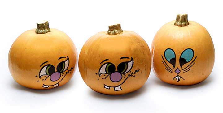 Ornamental Pumpkins (Painted)