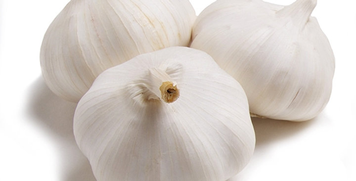 Garlic (Colossal)