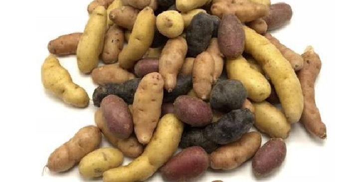 Organic Potatoes (Fingerling Medley)