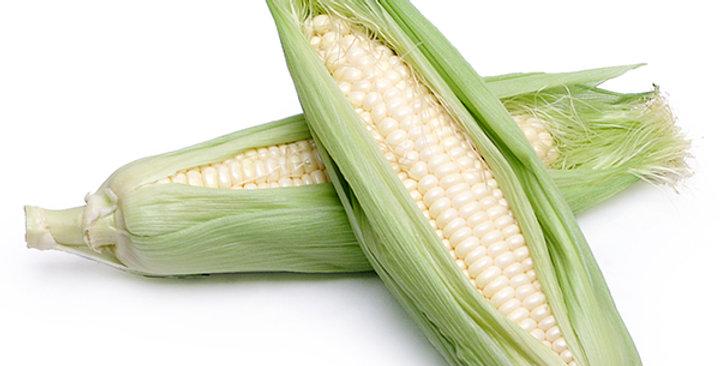 Corn (White)