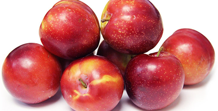 Plums (Japanese)
