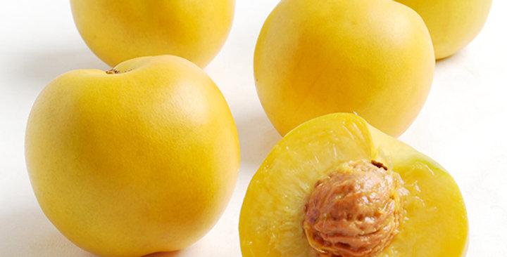 Nectarines (Mango)