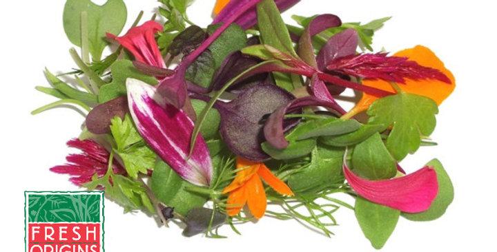 Microgreens (Chefs Blend)