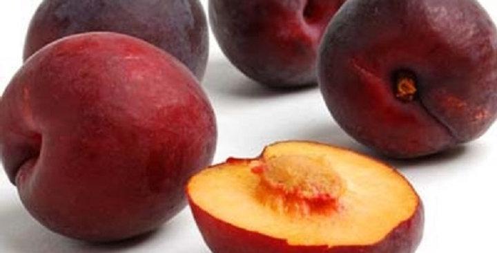 Apricots (Blue Velvet™)