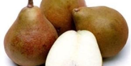 Pears (Taylor Gold)