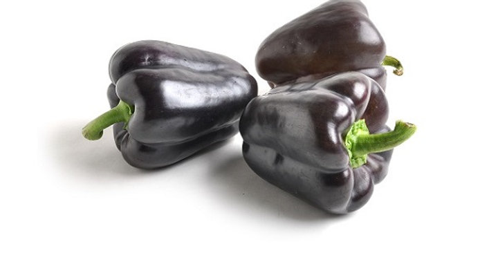 Peppers (Bell, Purple Holland)
