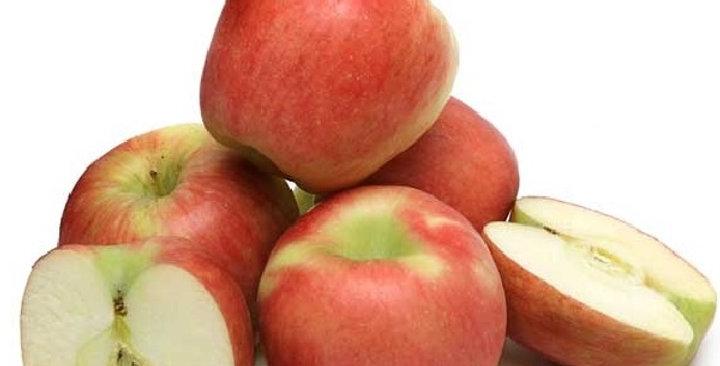 Organic Apples (Ambrosia)