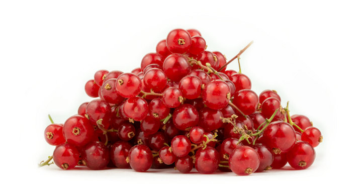 Currants (Red)