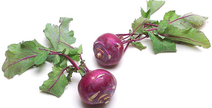 Baby Kohlrabi (Purple)
