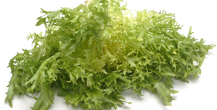Baby Frisée (Yellow)