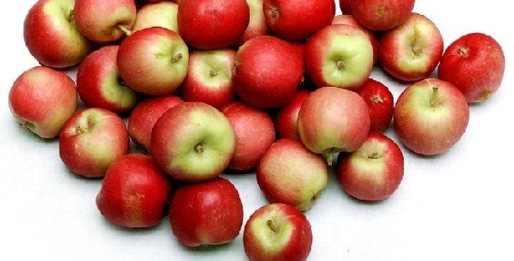 Organic Apples (Crimson Gold)