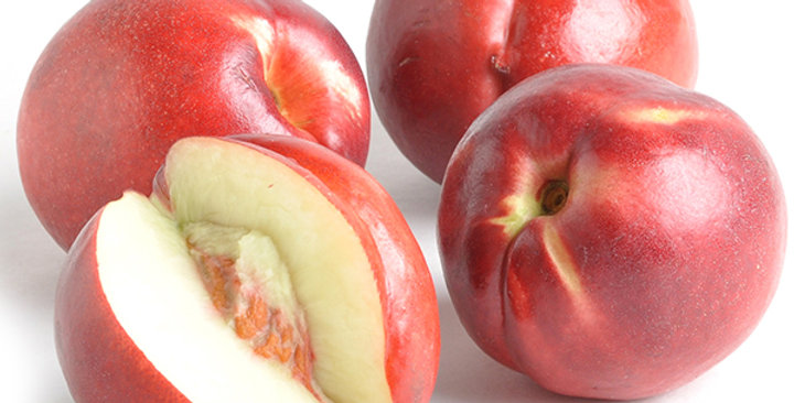 Nectarines (White, Candy Pearl)