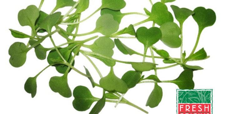 Microgreens (Arugula)