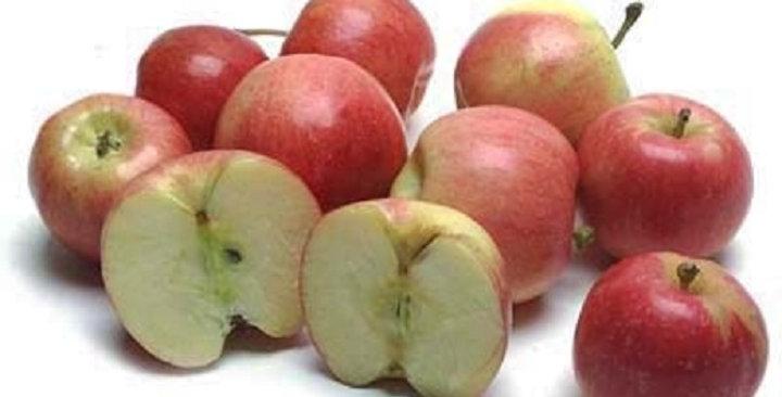 Apples (Gala, Baby)