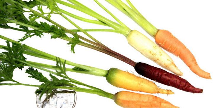 Tiny Veggies™ (Carrot Mix)