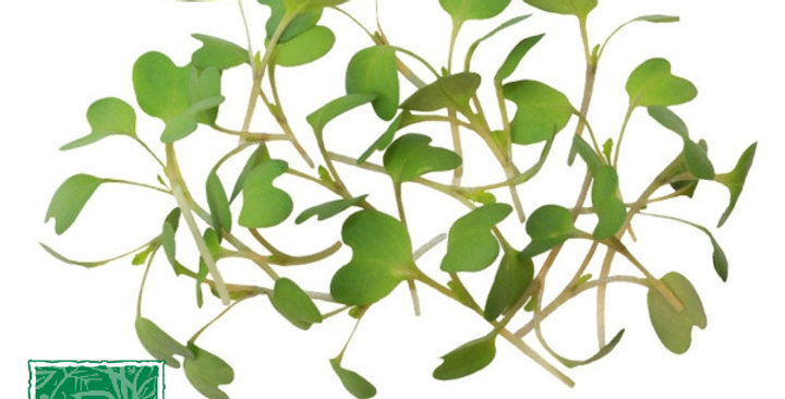 Microgreens (Wasabi™)