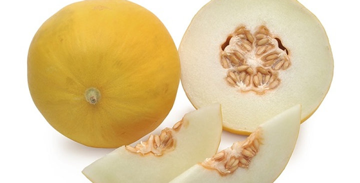 Melons (Golden Honeydew)