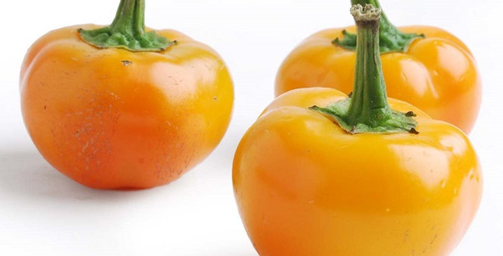 Peppers (Goldew Peppadew®)
