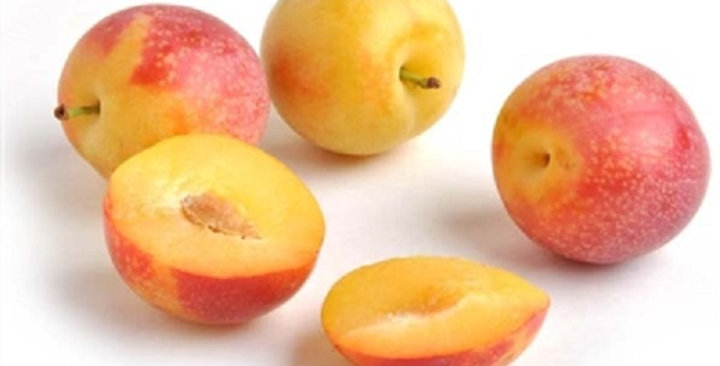 Plums (Cherry)