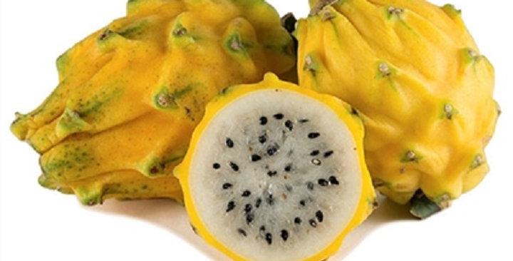 Dragon Fruit (Yellow)