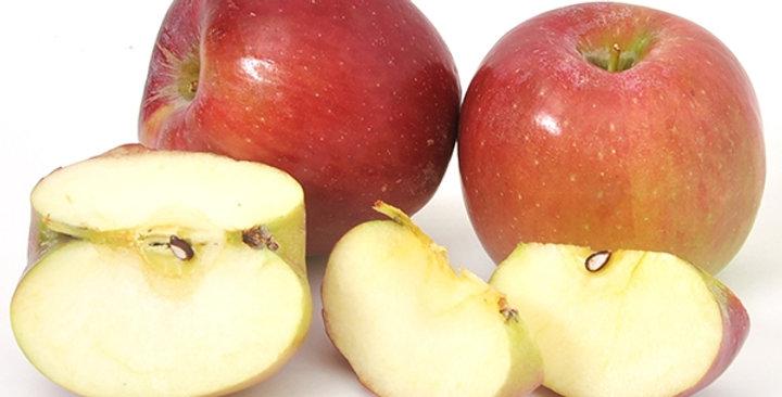 Organic Apples (RosaLynn)