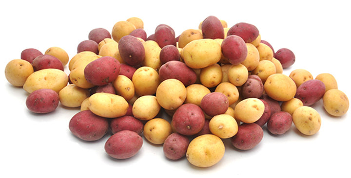 Potatoes (Pee Wee, Medley)