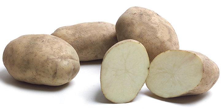 Potatoes (Kennebec)