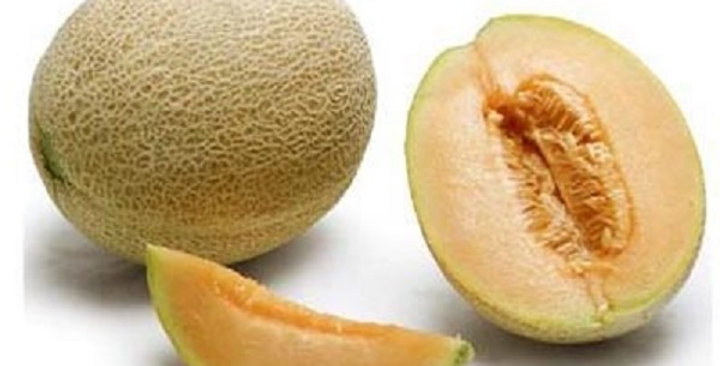 Melons (Persian)