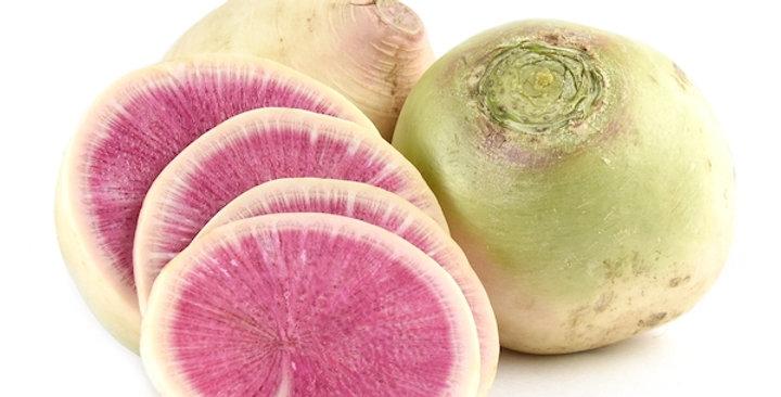Radish (Watermelon)