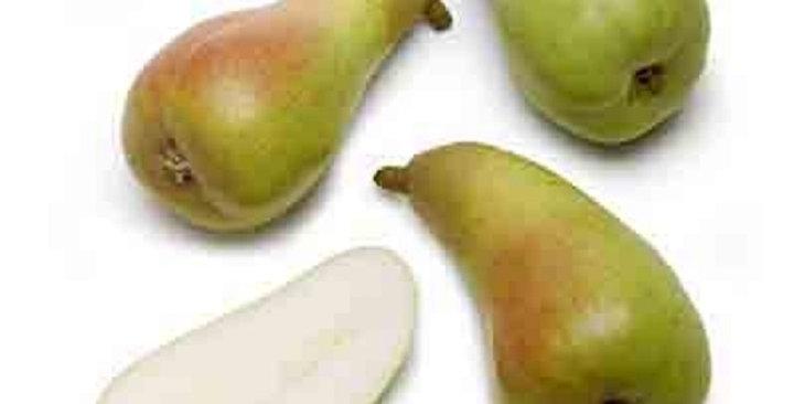 Organic Pears (Abate Fetel)