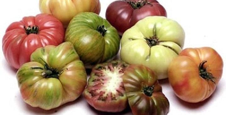 Tomatoes (Heirloom, Assorted)