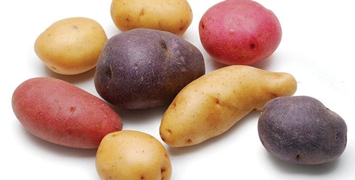 Potatoes (Gemstone®)