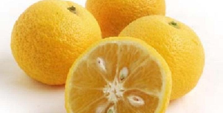 Sudachi Citrus