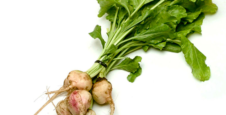 Baby Beets (White)