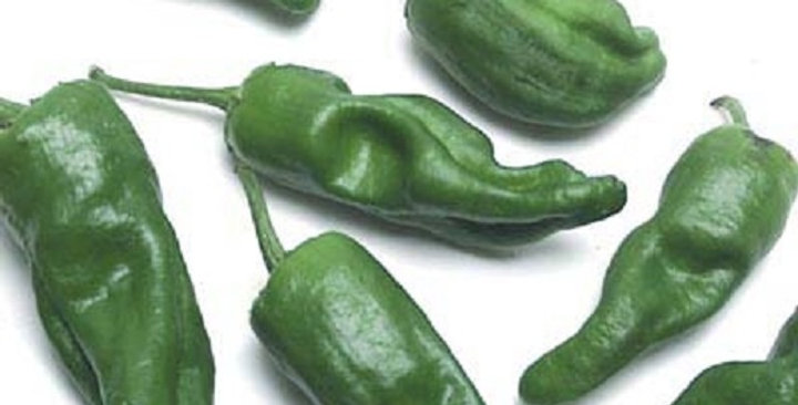 Peppers (Padron)