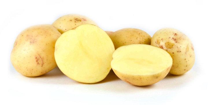 Organic Potatoes (Baby Yellow)