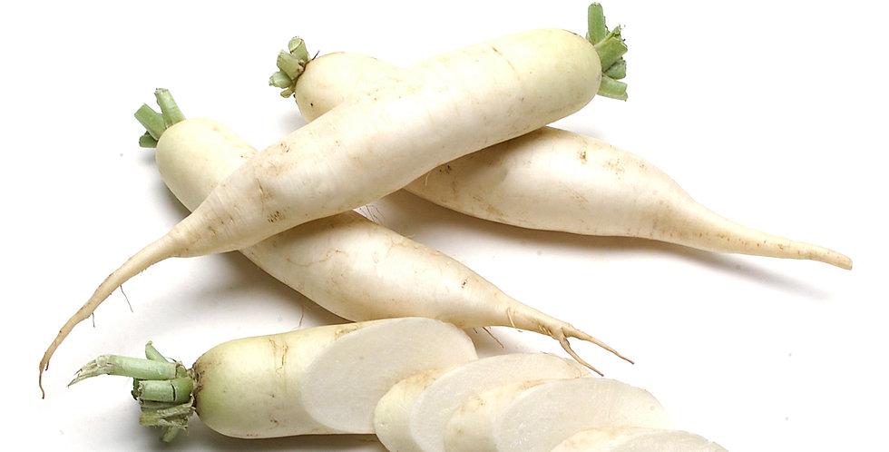 Organic Radish (Daikon)