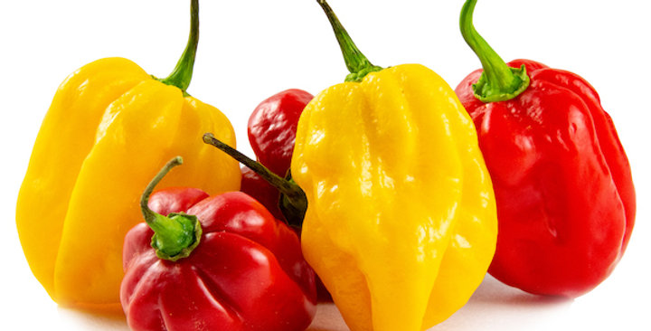 Peppers (Habanero, Red & Yellow)
