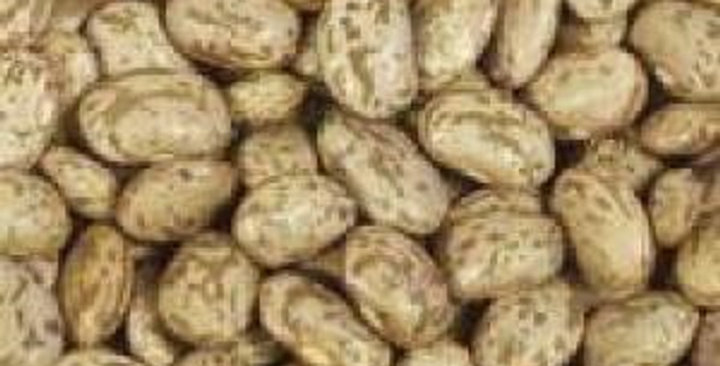 Dried Beans (Pinto)
