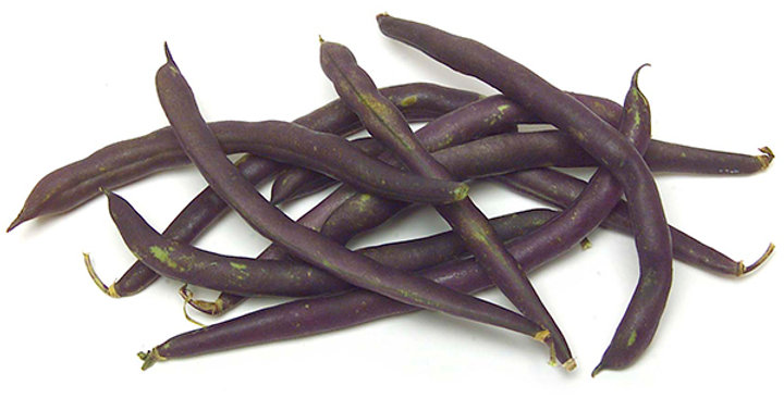 Beans (Wax, Purple)