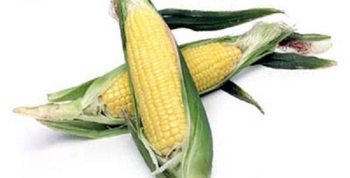 Organic Corn (Sweet Yellow)