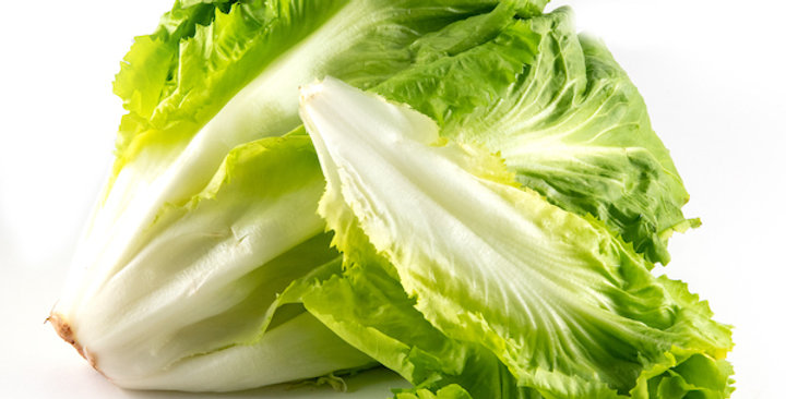 Organic Lettuce (Romaine)