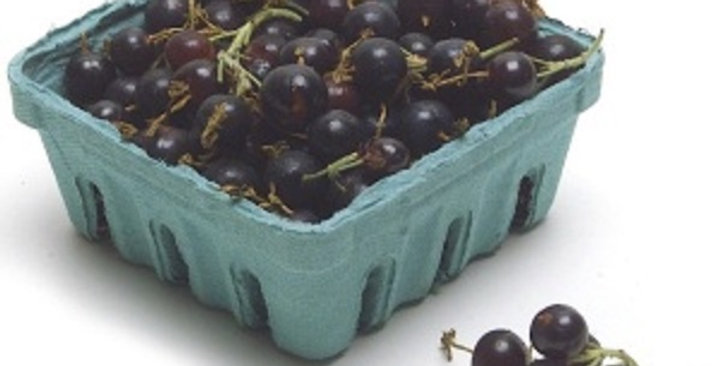 Currants (Black)