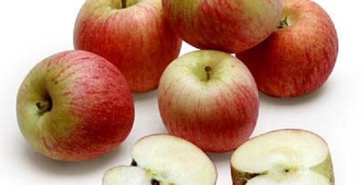 Organic Apples (Gala)