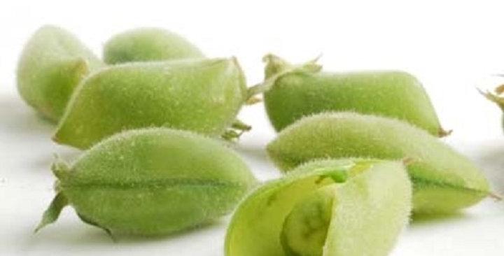 Beans (Garbanzo, Fresh in the Shell)