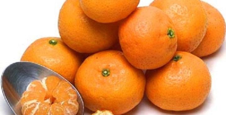 Mandarins (Kishu)